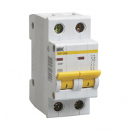 Автоматический выключатель IEK ВА47-29М 2р 2А D