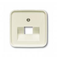 Центральная пластина для телефонных/компьютерных розеток с наклонным выходом