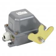 Выключатель концевой КУ-704 У1, W- образный рычаг, 10А, IP44, 2 эл. цепи, IEK