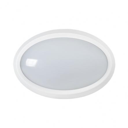 Светильник светодиодный LED ДПО 5040 12Вт 4000K IP65 овал белый IEK - 1