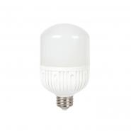 Лампа LED LB-65 230V 50W 4300Lm  E40 6400K FERON