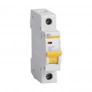 Автоматический выключатель IEK ВА47-29 1p 10A В